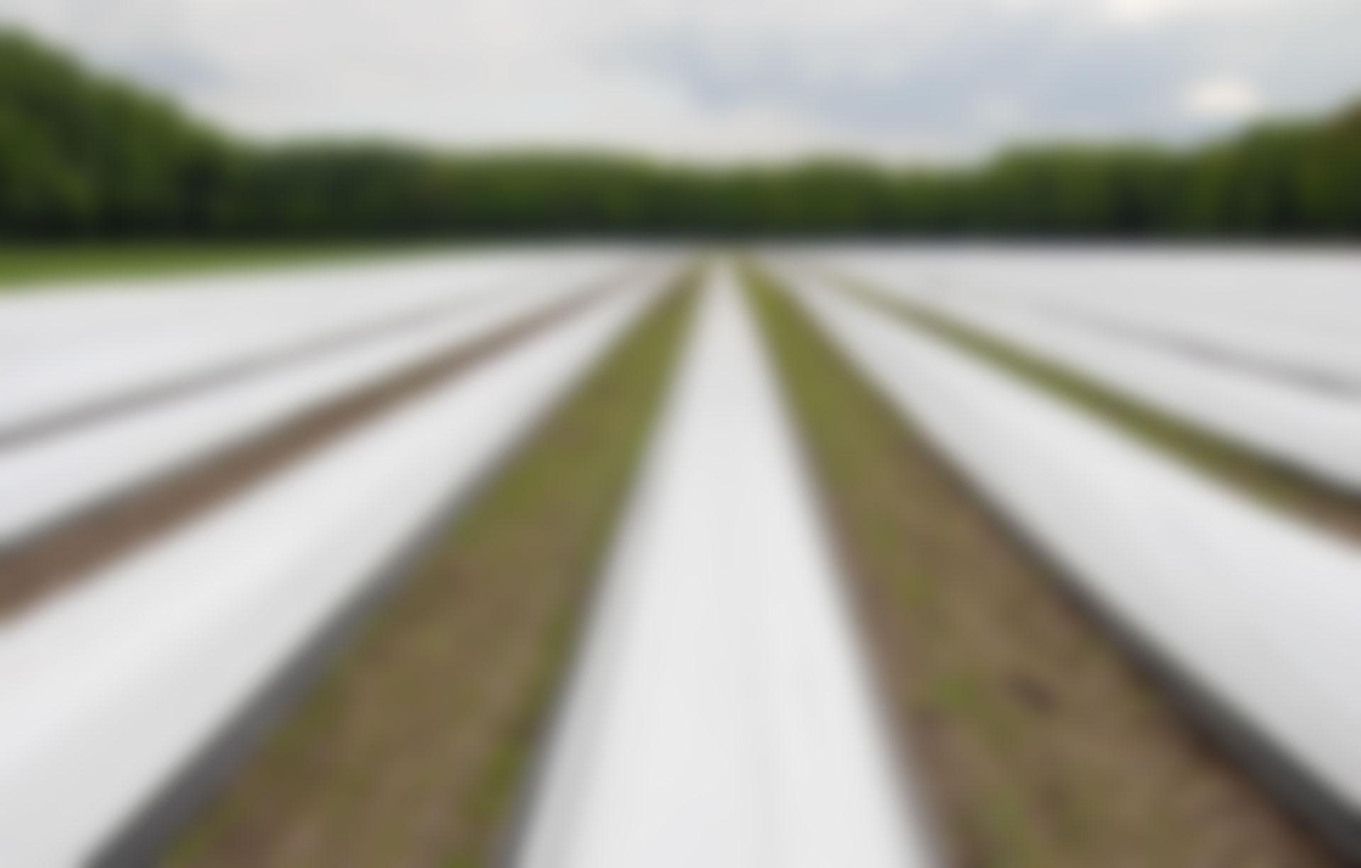 Nachhaltigkeit_Video